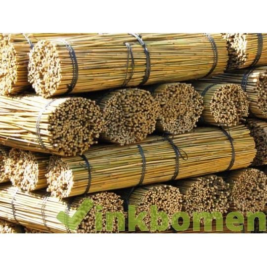 Bamboestokken 150cm 5v. 14-16mm
